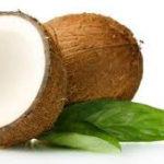 ココナッツオイルの5つの効果と効能