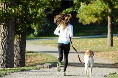 ペットのコミュニケーションやリズム運動でセロトニン分泌