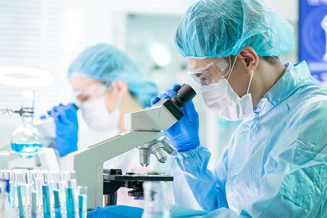 アトピーと乳酸菌に関するさまざまな研究